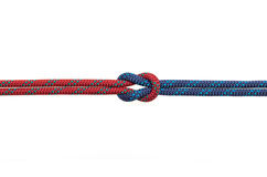 Reef knot. On a white background Royalty Free Stock Images