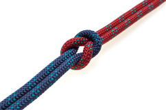 Reef knot Royalty Free Stock Images