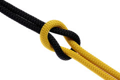 Reef-knot of black and yellow rope Royalty Free Stock Image