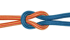 Reef knot, yellow and blue ropes. Royalty Free Stock Image