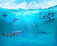 Reef with marine animals. Ocean underwater with sharks. Coral reef with marine animals vector illustration