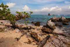 Reef. Rocks by the sea in the morning Royalty Free Stock Image