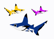 Reef sharks. Tree reef sharks on white Royalty Free Stock Images