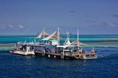 Reefworld en la gran barrera de coral Imagen de archivo