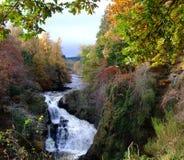 Reekie Linn dichtbij Kirriemuir, Angus, Schotland Royalty-vrije Stock Afbeelding