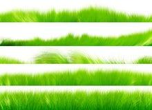Reeks 01 van de Borstel van het gras Stock Fotografie