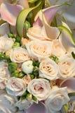 Reeks 27 van het huwelijk. Stock Fotografie