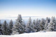 Reeks 7 van de winter Royalty-vrije Stock Afbeeldingen