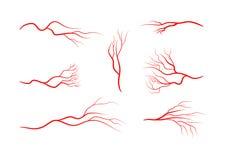 Reeks abstracte aders, bloedvat, slagaders, haarvaten vector illustratie
