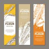 Reeks achtergronden voor etiket, pakket Schetshand getrokken illustratie van tarweoren Landbouw, korrel, graangewas royalty-vrije illustratie