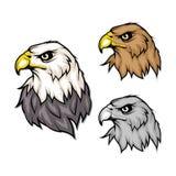 Reeks adelaars Kaal adelaarsembleem Het wilde vogels trekken Hoofd van een adelaar vector illustratie