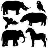 Reeks 1 Afrikaanse dierensilhouetten Stock Foto's