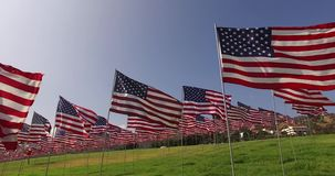 Reeks Amerikaanse vlaggen die in de wind op Memorial Day fladderen Los Angeles, Californië, de V stock footage