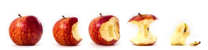 Reeks appelen Gebeten appelen Royalty-vrije Stock Afbeeldingen