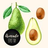Reeks avocado's Stock Foto's
