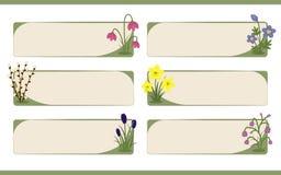 Reeks banners met de decoratie van de de lentebloem Stock Afbeeldingen