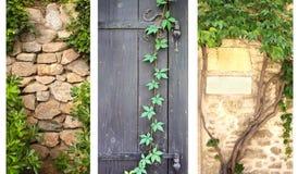Reeks banners met klimop en wijnstok Stock Afbeeldingen