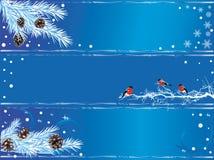 Reeks banners van het Nieuwjaar Stock Fotografie