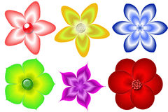 Reeks bloemen Royalty-vrije Illustratie