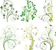 Reeks bloemenachtergronden Stock Afbeelding