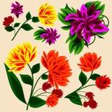 Reeks bloemenelementen Royalty-vrije Stock Afbeelding