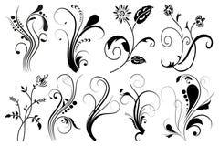 Reeks bloemenelementen voor ontwerp,  Stock Afbeeldingen