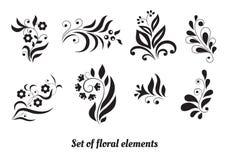 Reeks bloemenelementen voor ontwerp Stock Afbeeldingen