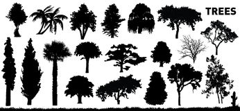 Reeks bomen Stock Fotografie