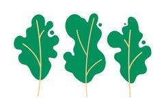 Reeks bomen Behoud en bescherming van het milieu, aanvulling van bossen, cultuur van tuinen, ecologie vector illustratie