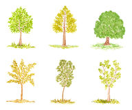 Reeks Bomen van de Waterverf, die op Wit wordt geïsoleerde Stock Afbeeldingen