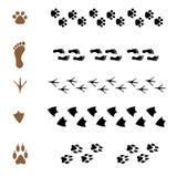 Reeks borstels in de vorm van dierlijke sporen Royalty-vrije Stock Afbeeldingen