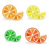 Reeks citrusvruchten, kleurrijke vector royalty-vrije illustratie