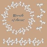 Reeks contour bloemenornamenten Bloemkroon van een wit overzicht van een korenbloem De de lentebloemen worden met de hand getrokk royalty-vrije illustratie
