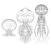 Reeks contour zwart-witte illustraties van kwallen Het voorwerp is afzonderlijk van de achtergrond royalty-vrije illustratie
