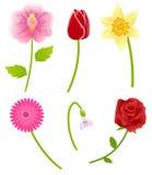 Reeks de lentebloemen Stock Illustratie