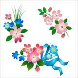 Reeks de lentebloemen Royalty-vrije Stock Afbeelding