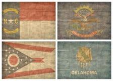 Reeks de staatsvlaggen van de V.S. Stock Fotografie