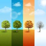 Reeks de van de vier seizoenen van de boombanner Stock Afbeelding