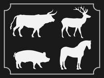Reeks dieren op zwarte achtergrond wordt geïsoleerd die stock illustratie
