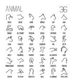 Reeks dierlijke pictogrammen in moderne dunne lijnstijl Royalty-vrije Stock Fotografie
