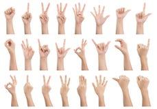 Reeks diverse die gebaren en teken van Vrouwen` s hand op whi wordt geïsoleerd royalty-vrije stock foto's