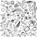Reeks diverse groenten Royalty-vrije Stock Fotografie