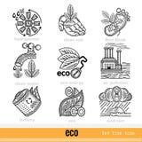 Reeks Eco-Problemen en het Webpictogrammen van het Besluitoverzicht Royalty-vrije Stock Afbeeldingen