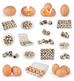 Reeks eieren op wit wordt geïsoleerd dat Royalty-vrije Stock Foto's