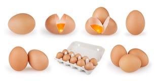 Reeks eieren op witte achtergrond wordt geïsoleerd die Royalty-vrije Stock Fotografie