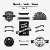 Reeks 2 elementen, etiketten en kentekens in een retro stijl Stock Afbeeldingen
