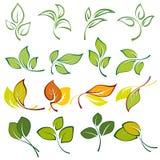 Reeks emblemen van multi-colored bladeren Royalty-vrije Stock Afbeeldingen