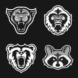 Reeks emblemen voor sportteam De panters, Gorilla's, draagt, Wasberen Dierlijke mascotte logotype malplaatje Vector illustratie Stock Foto