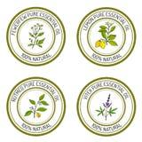 Reeks etherische olieetiketten: citroen, fewerfew, notemuskaat, vitex Stock Foto