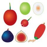 Reeks exotische vruchten. Stock Foto's